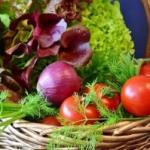 Warzywa nietrwałe, przechowywanie.