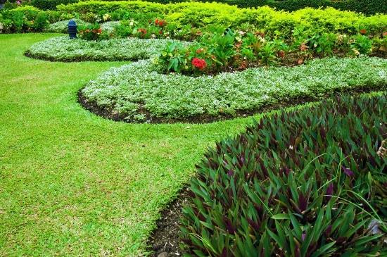 Ziemia z ogrodu