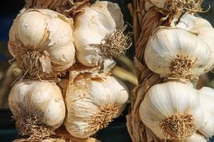 garlic-3747176_1920 2